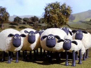 shaun the sheep2